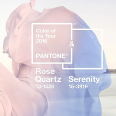 Featured_pantone